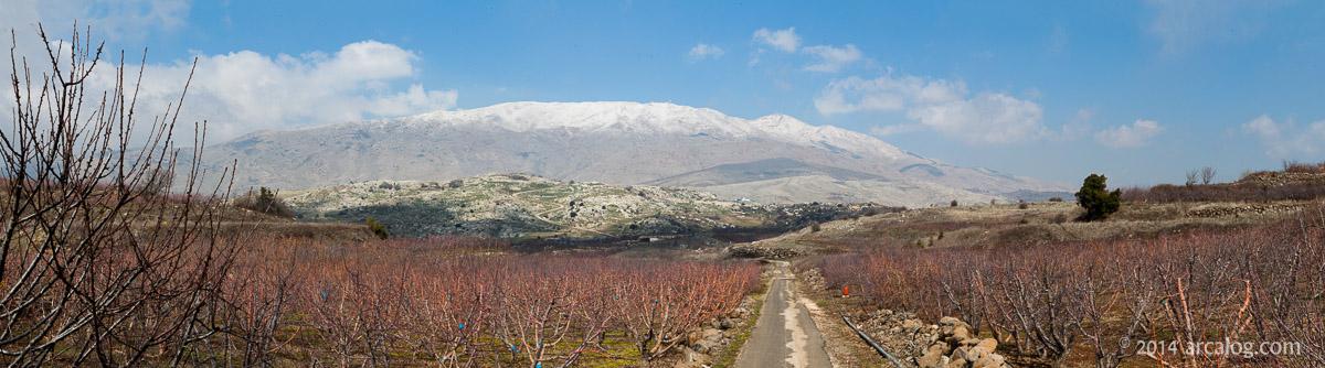 Mt Hermon