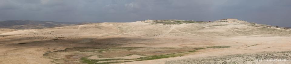 Tel Arad